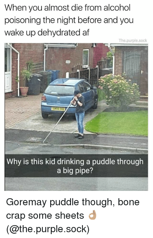 Crapping: When you almost die from alcohol  poisoning the night before and you  wake up dehydrated af  The.purple.sock  Why is this kid drinking a puddle through  a big pipe? Goremay puddle though, bone crap some sheets 👌🏽 (@the.purple.sock)
