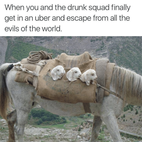 Drunk: When you and the drunk squad finally  get in an uber and escape from all the  evils of the world.  @MasiPopal