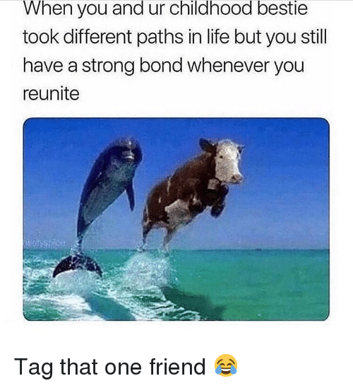 Life, Memes, and Strong: When you and ur childhood bestie  took different paths in life but you still  have a strong bond whenever you  reunite Tag that one friend 😂