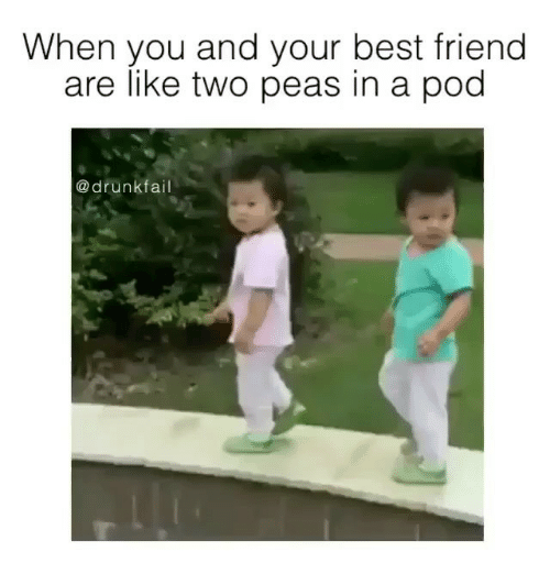 Two Peas In A Pod Meme 28 Images We Are 3 Peas In A