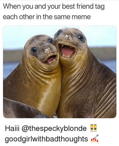 best friend tag: When you and your best friend tag  each other in the same meme Haiii @thespeckyblonde 👯♀️ goodgirlwithbadthoughts 💅🏼
