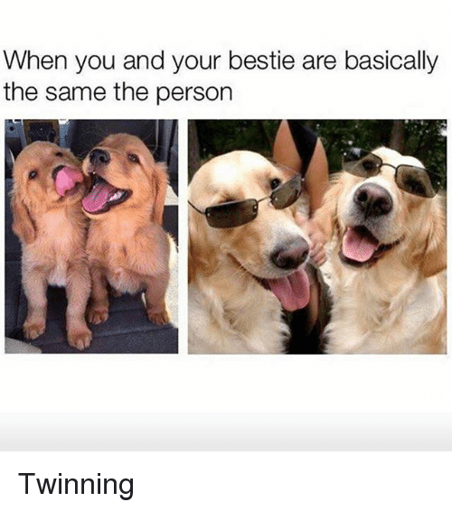 Girl Memes, Personal, and Ares: When you and your bestie are basically  the same the person Twinning
