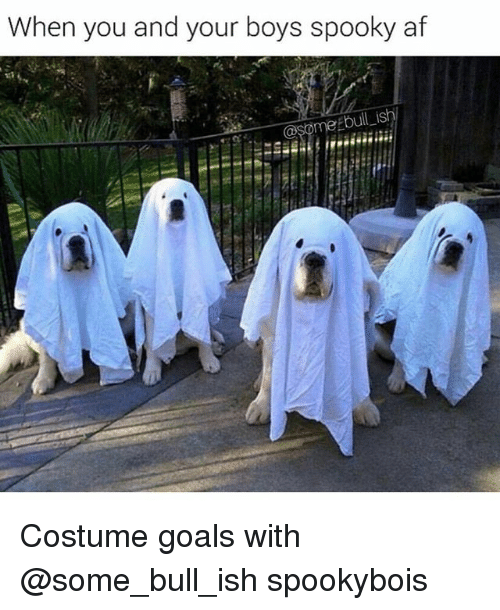 Af, Funny, and Goals: When you and your boys spooky af  bull i Costume goals with @some_bull_ish spookybois
