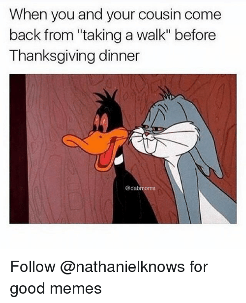 "Memes, Thanksgiving, and Good: When you and your cousin come  back from ""taking a walk"" before  Thanksgiving dinner  @dabmoms Follow @nathanielknows for good memes"