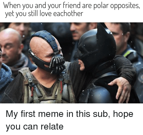 opposites: When you and your friend are polar opposites  yet you still love eachother My first meme in this sub, hope you can relate