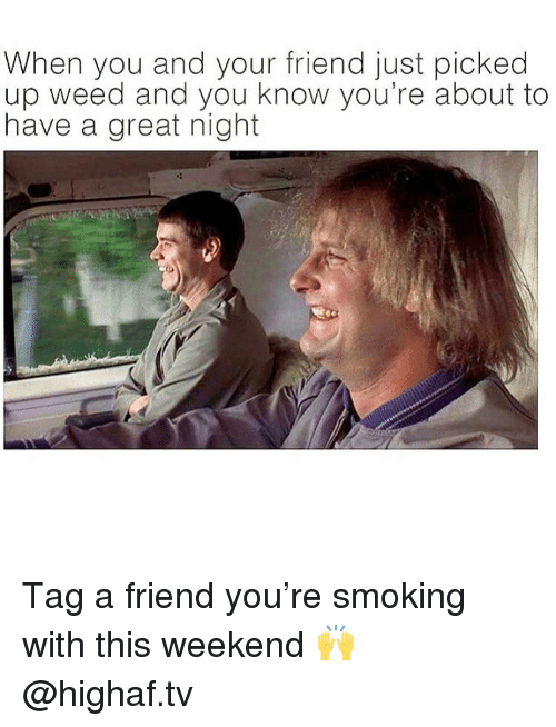 Memes, Smoking, and Weed: When you and your friend just picked  up weed and you know you're about to  have a great night Tag a friend you're smoking with this weekend 🙌 @highaf.tv