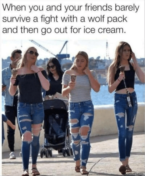 wolf pack: When you and your friends barely  survive a fight with a wolf pack  and then go out for ice cream.  evilmilk.com
