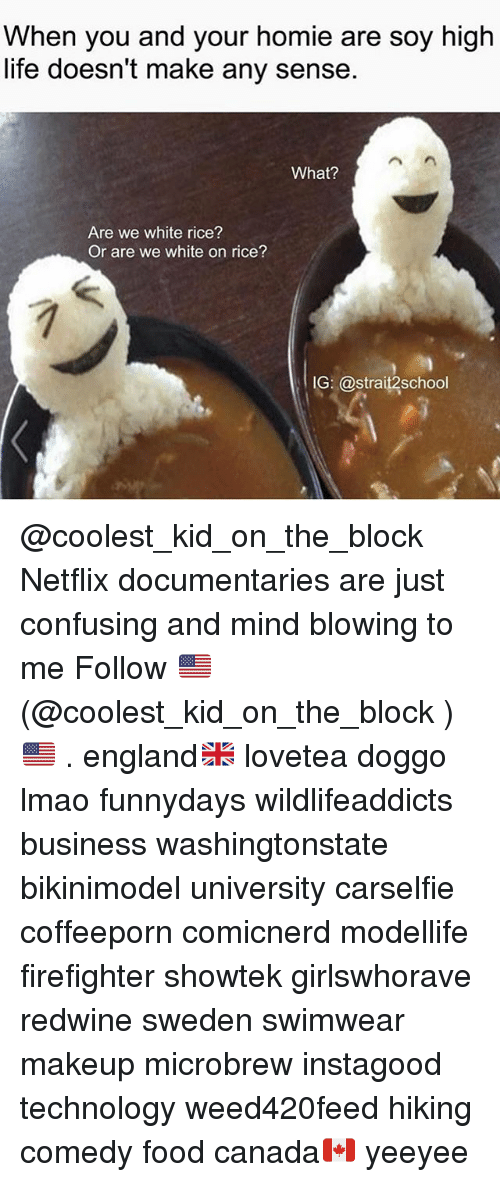 Ricing: When you and your homie are soy high  life doesn't make any sense.  What?  Are we white rice?  Or are we white on rice?  IG: @strait2school @coolest_kid_on_the_block Netflix documentaries are just confusing and mind blowing to me Follow 🇺🇸(@coolest_kid_on_the_block )🇺🇸 . england🇬🇧 lovetea doggo lmao funnydays wildlifeaddicts business washingtonstate bikinimodel university carselfie coffeeporn comicnerd modellife firefighter showtek girlswhorave redwine sweden swimwear makeup microbrew instagood technology weed420feed hiking comedy food canada🇨🇦 yeeyee