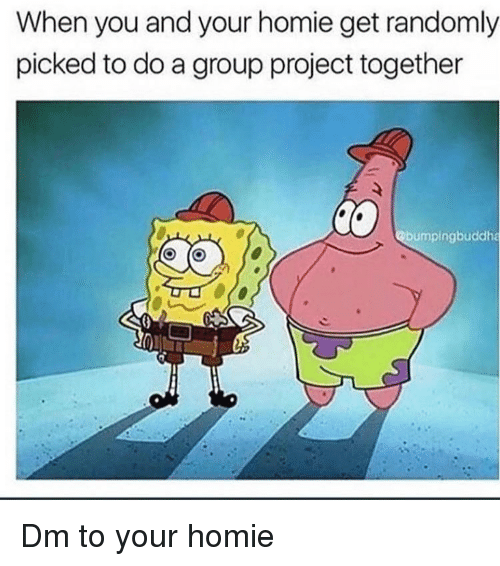Homie, Memes, and 🤖: When you and your homie get randomly  picked to do a group project together  bumpingbuddha Dm to your homie
