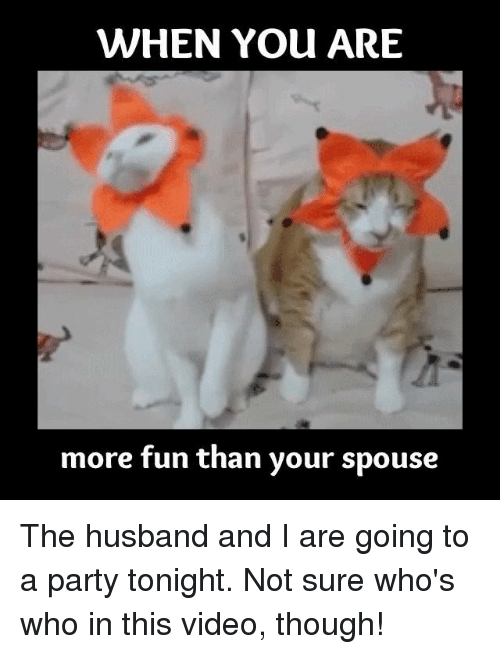 Funny Meme For Your Husband : When you are more fun than your spouse the husband and i