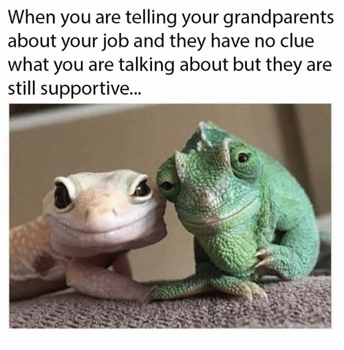 Job, Clue, and They: When you are telling your grandparents  about your job and they have no clue  what you are talking about but they are  still supportive...