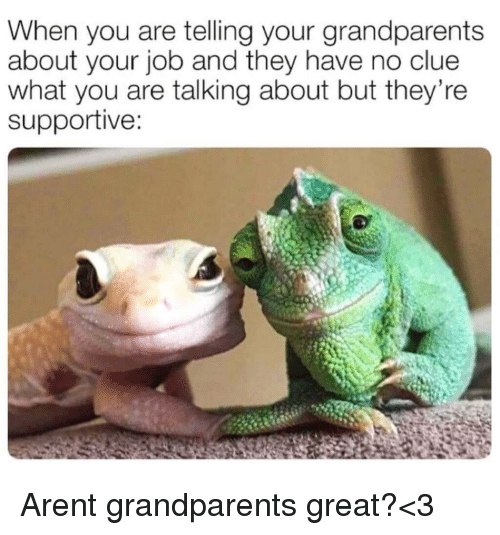 Job, Clue, and They: When you are telling your grandparents  about your job and they have no clue  what you are talking about but they're  supportive: <p>Arent grandparents great?<3</p>
