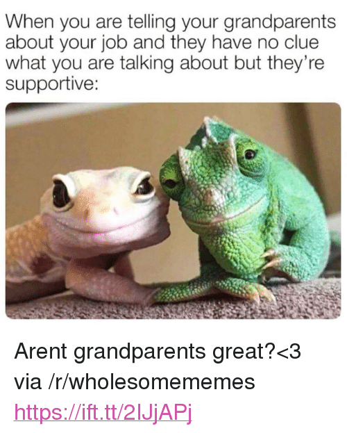 "Job, Clue, and Via: When you are telling your grandparents  about your job and they have no clue  what you are talking about but they're  supportive: <p>Arent grandparents great?<3 via /r/wholesomememes <a href=""https://ift.tt/2IJjAPj"">https://ift.tt/2IJjAPj</a></p>"