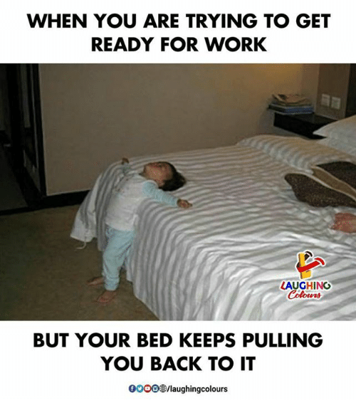 Work, Indianpeoplefacebook, and Back: WHEN YOU ARE TRYING TO GET  READY FOR WORK  LAUGHING  BUT YOUR BED KEEPS PULLING  YOU BACK TO IT  0OO0/laughingcolours