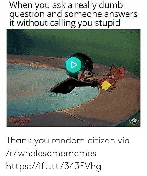 Tom & Jerry: When you ask a really dumb  question and someone answers  it without calling you stupid  TOM JERRY  CLASSIE Thank you random citizen via /r/wholesomememes https://ift.tt/343FVhg