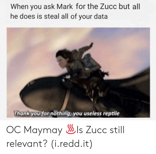 Zucc: When you ask Mark for the Zucc but al  he does is steal all of your data  Thank you for nöthing, you useless reptile OC Maymay ♨Is Zucc still relevant? (i.redd.it)