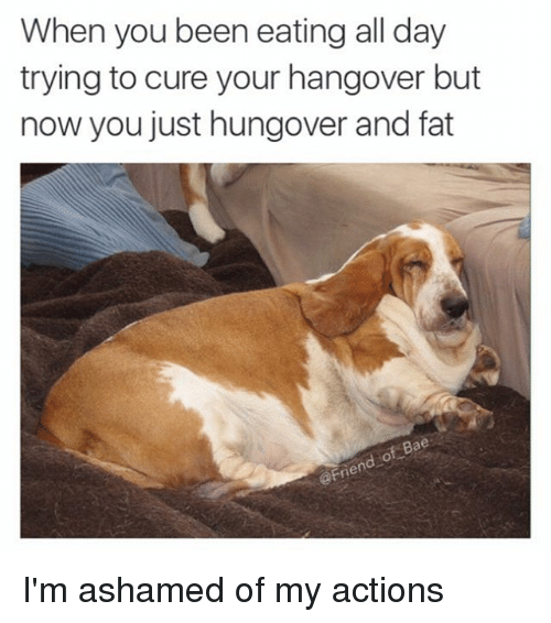 Funny, Hangover, and Girl Memes: When you been eating all day  trying to cure your hangover but  now you just hungover and fat I'm ashamed of my actions