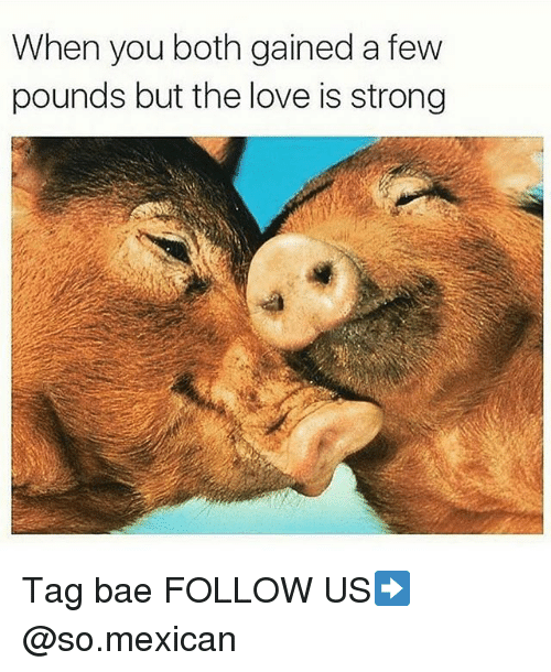 Bae, Love, and Memes: When you both gained a few  pounds but the love is strong Tag bae FOLLOW US➡️ @so.mexican