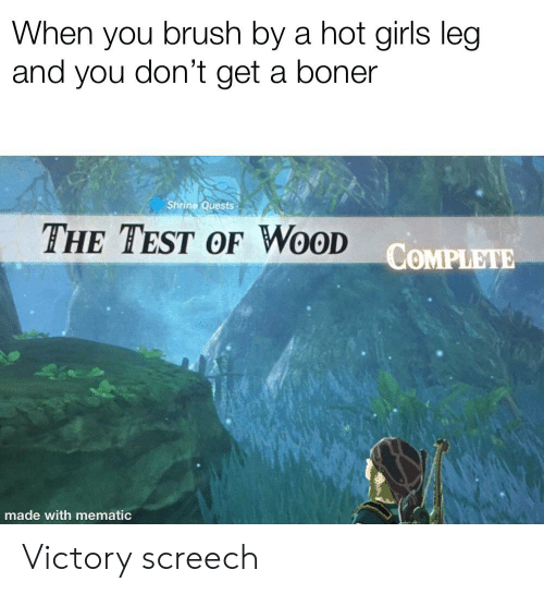 victory screech: When you brush by a hot girls leg  and you don't get a boner  Shrine Quests  THE TEST OF WOOD  COMPLETE  made with mematic Victory screech