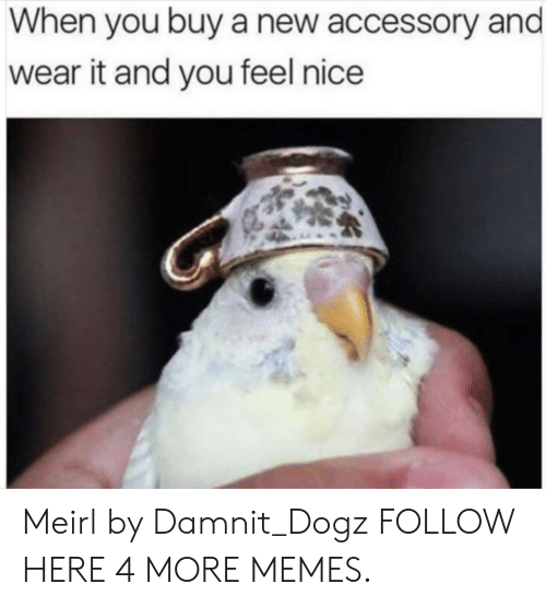 Feels Nice: When you buy a new accessory and  wear it and you feel nice Meirl by Damnit_Dogz FOLLOW HERE 4 MORE MEMES.