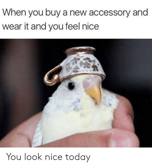 Wear It: When you buy a new accessory and  wear it and you feel nice You look nice today