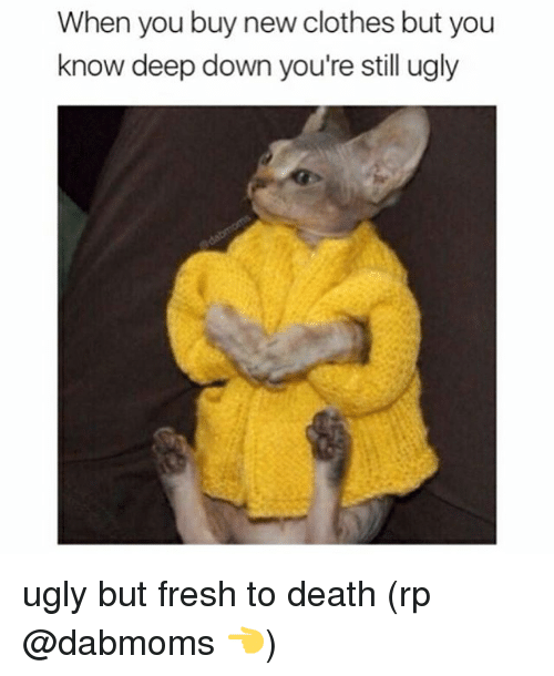 Clothes, Fresh, and Memes: When you buy new clothes but you  know deep down you're still ugly ugly but fresh to death (rp @dabmoms 👈)