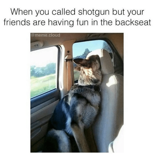 meme: When you called shotgun but your  friends are having fun in the backseat  @meme.cloud