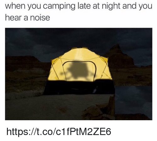 When You Camping Late at Night and You Hear a Noise ...