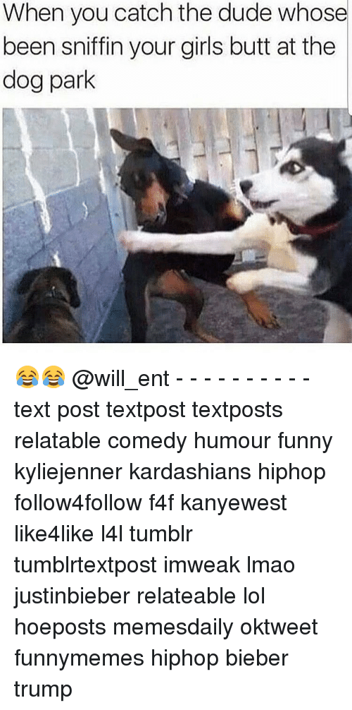 Memes, 🤖, and Bieber: When you catch the dude whose  been sniffin your girls butt at the  dog park 😂😂 @will_ent - - - - - - - - - - text post textpost textposts relatable comedy humour funny kyliejenner kardashians hiphop follow4follow f4f kanyewest like4like l4l tumblr tumblrtextpost imweak lmao justinbieber relateable lol hoeposts memesdaily oktweet funnymemes hiphop bieber trump