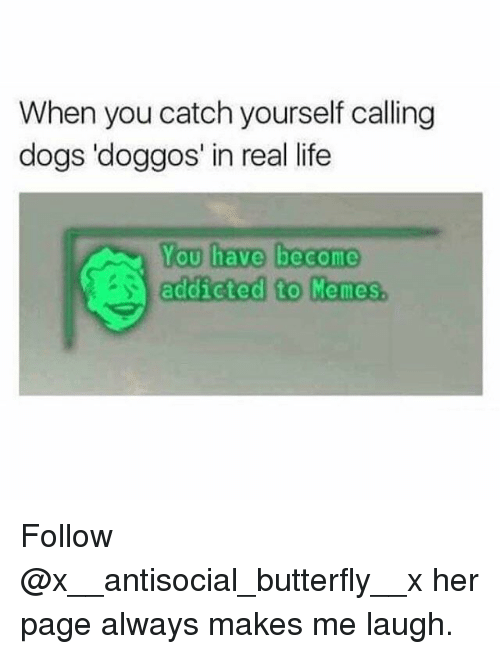 You Have Become Addicted To: When you catch yourself calling  dogs 'doggos' in real life  You have become  addicted to Memies Follow @x__antisocial_butterfly__x her page always makes me laugh.