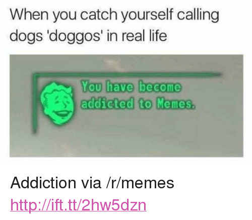 """You Have Become Addicted To: When you catch yourself calling  dogs 'doggos' in real life  You have become  addicted to Momes. <p>Addiction via /r/memes <a href=""""http://ift.tt/2hw5dzn"""">http://ift.tt/2hw5dzn</a></p>"""