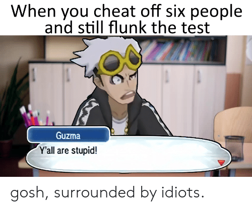 Yall Are Stupid: When you cheat off six people  and still flunk the test  Guzma  Y'all are stupid! gosh, surrounded by idiots.