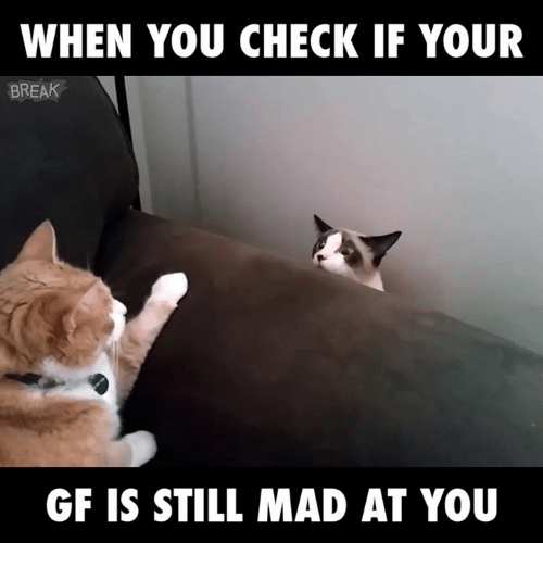 Still Mad At You: WHEN YOU CHECK IF YOUR  BREAK  GF IS STILL MAD AT YOU