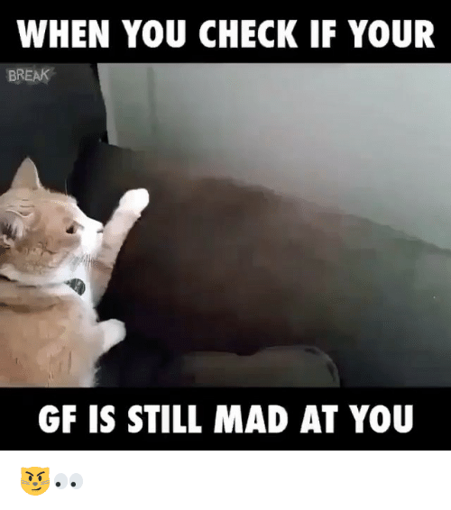 Still Mad At You: WHEN YOU CHECK IF YOUR  BREAK  GF IS STILL MAD AT YOU 😼👀