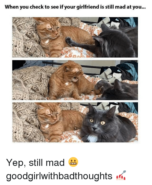 Still Mad At You: When you check to see if your girlfriend is still mad at you... Yep, still mad 😬 goodgirlwithbadthoughts 💅🏻