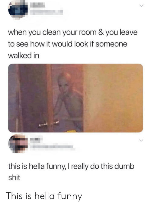 Hella Funny: when you clean your room & you leave  to see how it would look if someone  walked in  this is hella funny, I really do this dumb  shit This is hella funny