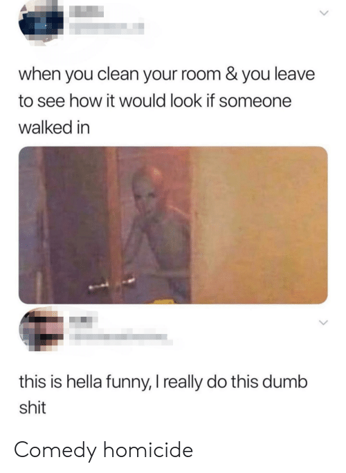 Hella Funny: when you clean your room & you leave  to see how it would look if someone  walked in  this is hella funny, I really do this dumb  shit Comedy homicide