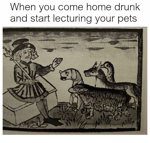 Drunk, Pets, and Home: When you come home drunk  and start lecturing your pets
