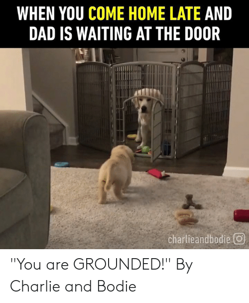 """grounded: WHEN YOU COME HOME LATE AND  DAD IS WAITING AT THE DOOR  charlieandbodie回 """"You are GROUNDED!""""  By Charlie and Bodie"""