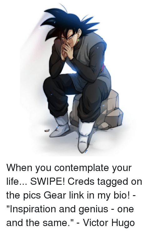 """Life, Memes, and Genius: When you contemplate your life... SWIPE! Creds tagged on the pics Gear link in my bio! - """"Inspiration and genius - one and the same."""" - Victor Hugo"""