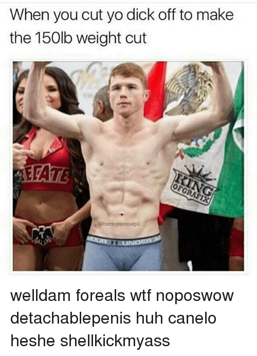 Huh, Memes, and Wtf: When you cut yo dick off to make  the 150lb weight cut welldam foreals wtf noposwow detachablepenis huh canelo heshe shellkickmyass