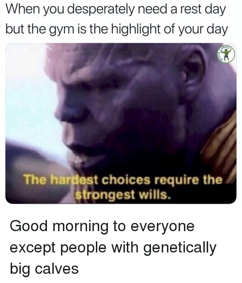 Gym, Memes, and Good Morning: When you desperately need a rest day  but the gym is the highlight of your day  ARDIO  The hardest choices require the  rongest wills. Good morning to everyone except people with genetically big calves