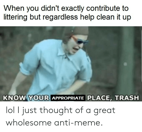 Lol I: When you didn't exactly contribute to  littering but regardless help clean it up  KNOW YOURI  APPROPRIATE PLACE, TRASH lol I just thought of a great wholesome anti-meme.