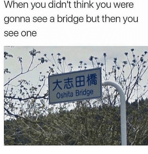 Memes, 🤖, and One: When you didn't think you were  gonna see a bridge but then you  see one