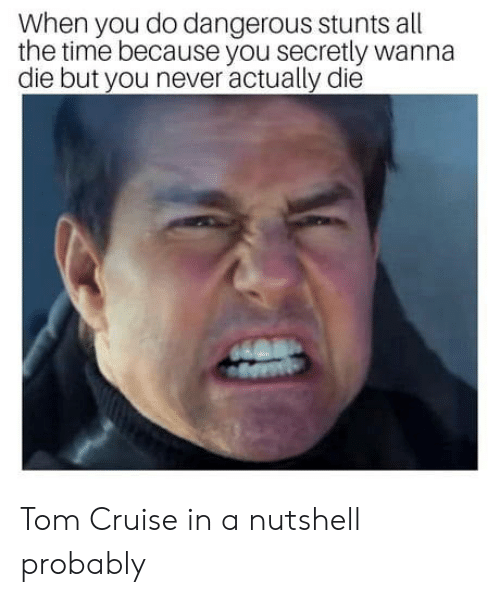 Tom Cruise: When you do dangerous stunts all  the time because you secretly wanna  die but you never actually die Tom Cruise in a nutshell probably