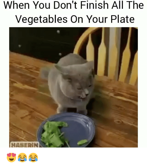 plated: When You Don't Finish All The  Vegetables On Your Plate  HASERIN 😍😂😂