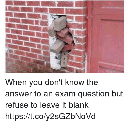 Girl Memes, Blank, and Answer: When you don't know the answer to an exam question but refuse to leave it blank https://t.co/y2sGZbNoVd