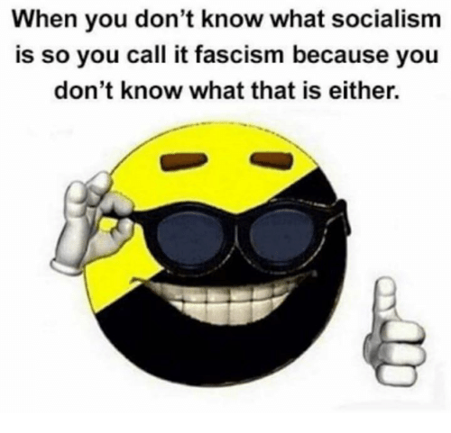 Memes, Socialism, and Fascism: When you don't know what socialism  is so you call it fascism because you  don't know what that is either.