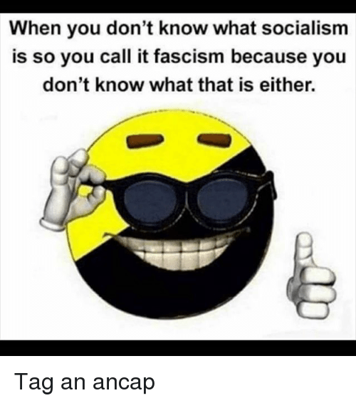 Memes, Socialism, and Fascism: When you don't know what socialism  is so you call it fascism because you  don't know what that is either. Tag an ancap