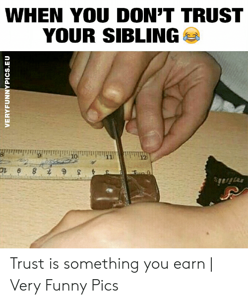 Dont Trust: WHEN YOU DON'T TRUST  YOUR SIBLING  10  12  Fue 0  minis  VERYFUNNYPICS.EU Trust is something you earn | Very Funny Pics